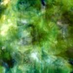 bosque-sensual1